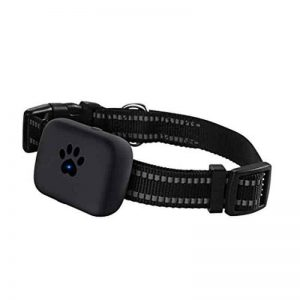 Dog GPS Tracking Collar, GSM Cellular, App, Waterproof IP67
