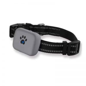 5. Pet GPS Tracker